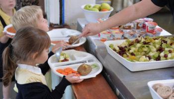 Госзакупкам в сфере школьного питания пропишут новые правила