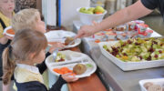 Учеников начальной школы обеспечат горячим питанием по стандартам
