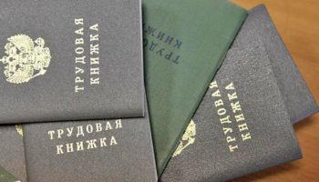 Трудовые книжки россиян переведут в цифру
