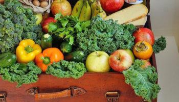 Для граждан ужесточаются правила провоза в РФ овощей, фруктов и цветов