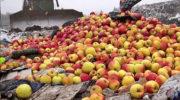 Запрещенную «санкционку» будут уничтожать еще в течение года