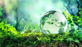 Граждане могут получить право на полную информацию о состоянии экологии