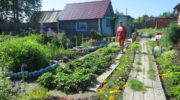 Россияне получили право легализовать часть самовольно занятых земель