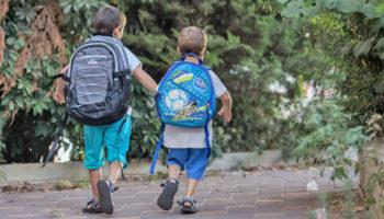 Братьев и сестер будет проще устроить вместе в один детсад или школу