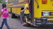 Запрет высаживать детей-безбилетников поддержали в правительстве