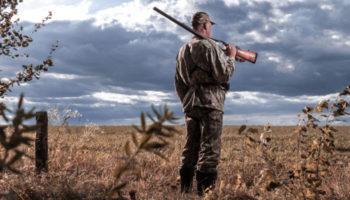 Новая обязанность для медиков: докладывать о здоровье владельцев оружия