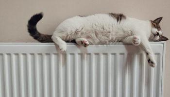 Погода в России скорректирует платежи за отопление в сторону уменьшения
