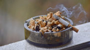Сигареты в России могут стать самозатухающими